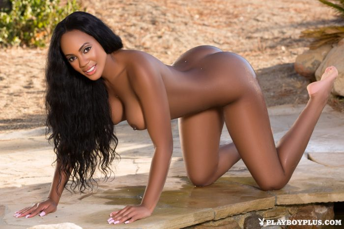 Black and beautiful Brittany
